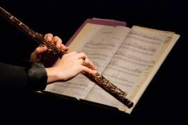 Zoom sur les principaux syndicats de la musique classique